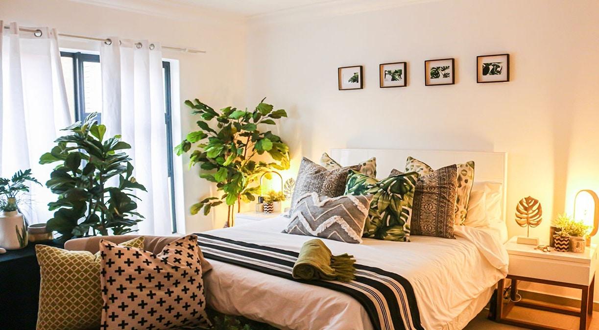 Plantes dans une chambre